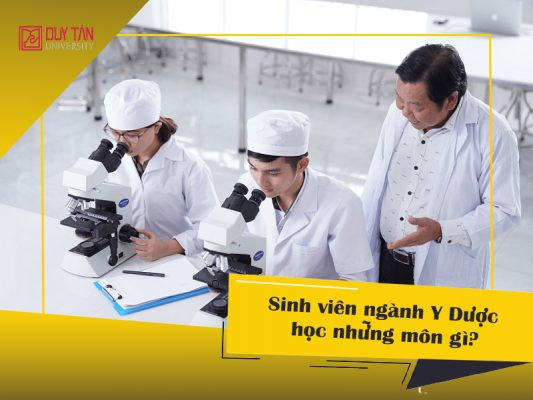 ngành Y Dược học những môn gì?